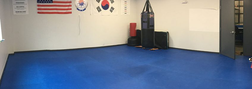 Dojang at Performance FieldHouse Paw Paw